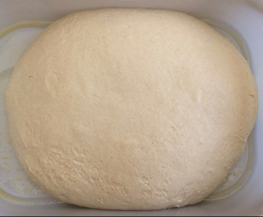 Milk Bread Dough